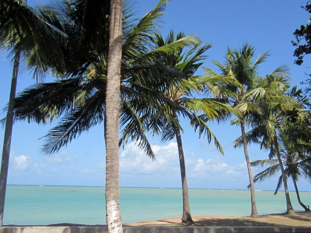 Roteiro em Maceió Alagoas, o caribe brasileiro | 1001 Dicas de Viagem