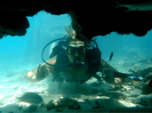 Snorkel Roteiro em Maceió Alagoas, o caribe brasileiro | 1001 Dicas de Viagem