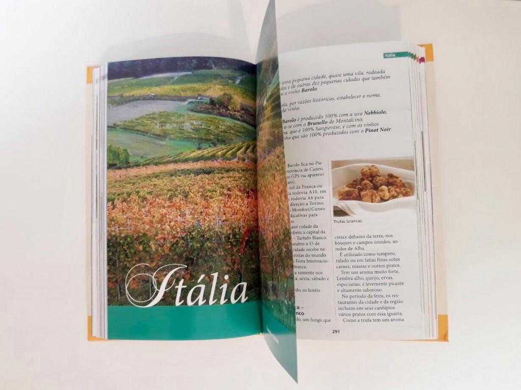 Livro sobre vinhos Viagens, Vinhos, História - Guia de enoturismo | 1001 Dicas de Viagem