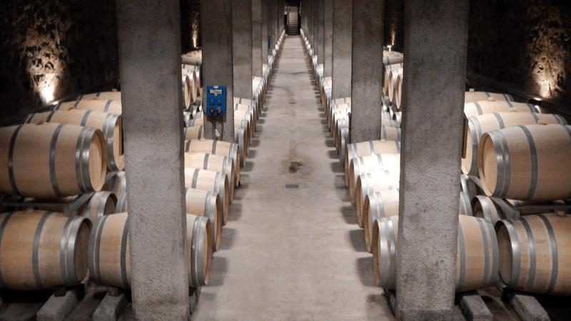 Wine Lovers Argentin Wines