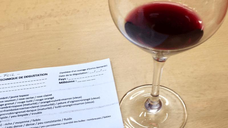 Vinhos do Beaujolais