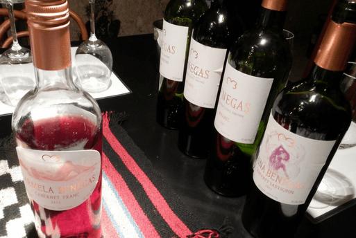 Wine Degustation Benegas Argetine