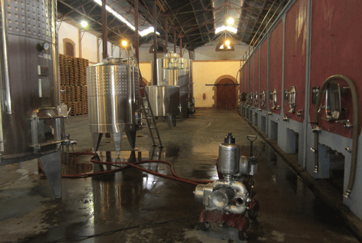 Wine Fermentation Mendoza