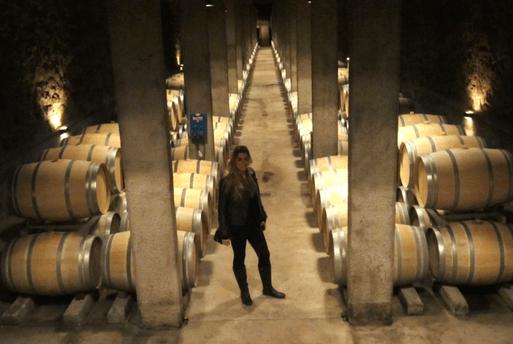 Wine Benegas Argetine