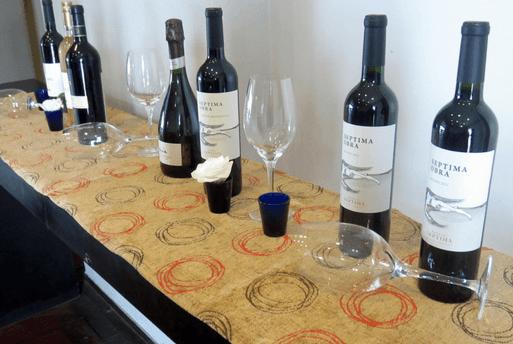 Bodega Septima Argentine Wine Mendoza