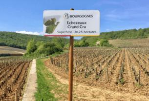 Route des Grands Crus en vélo - Bourgogne