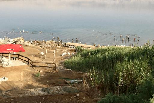 Flutuação no Mar Morto - Dead Sea Israel 7