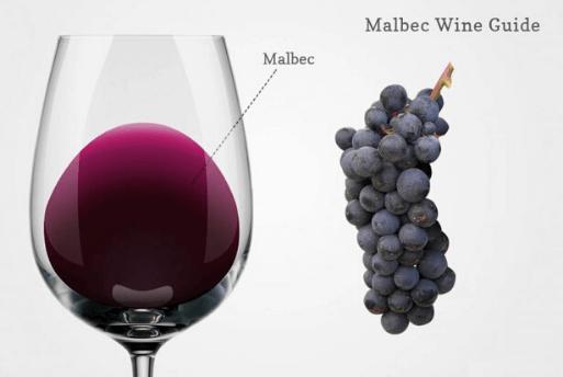 Malbec Day - Dia Mundial do Malbec - Malbec World Day | 1001 Dicas de Viagem