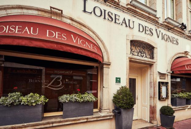 Burgundy Wine Experience - Restaurant Loiseau des Vignes Beaune | Photo 1001 Dicas de Viagem
